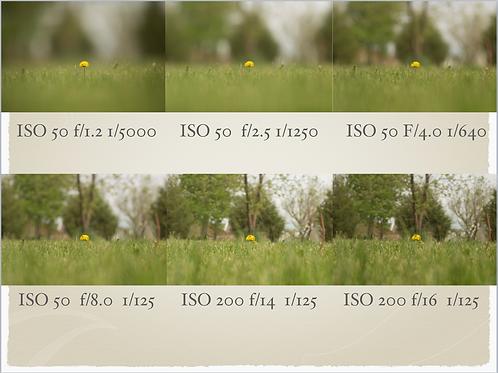 Basic Photography Digital Class