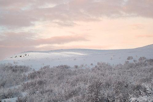 sunlight in artic winter landscape