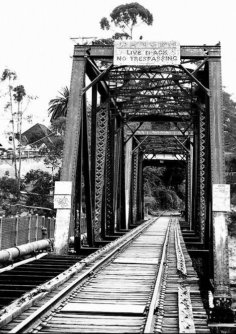 trestle bridge in santa cruz california