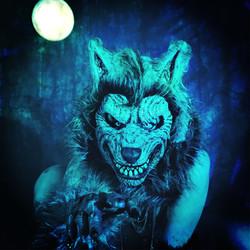 An American Werewolf