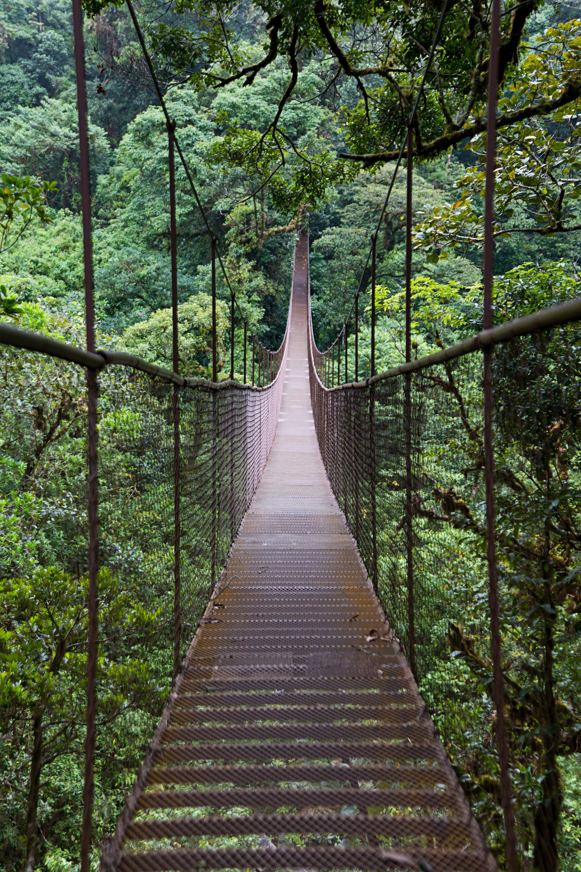 Hanging Bridges of Boquete