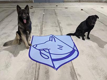 Floor-logo-Loki-Cobalt.jpg