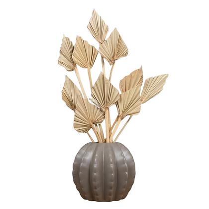 Mini Dried Palm Spears, Natural x 10