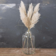 Pampas-Extra-Fluffy-Natural_f_1024x1024@