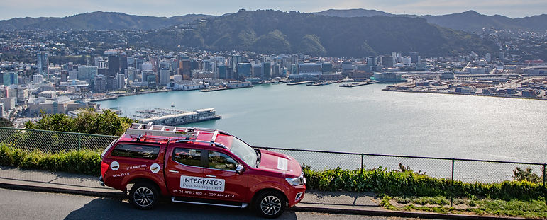 Wellingtons Leading Pest and Borer Control Specialists. Integrated Pest Management Wellington Porirua and Hutt Valley
