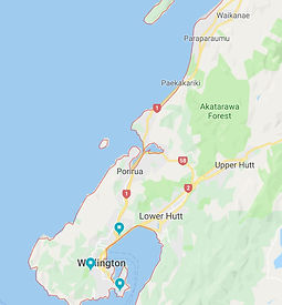 Pest Control in the Wellington Region