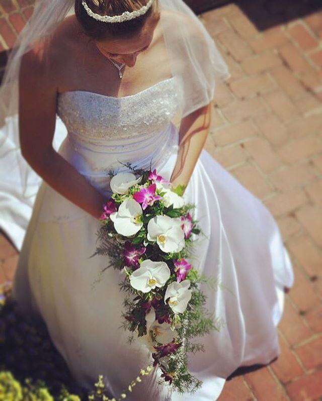 #everafterfloral #cascade #bouquet #orchids #plumosafern