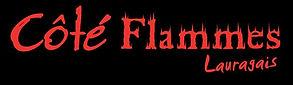 logo CFL sans poeles - copie.jpeg