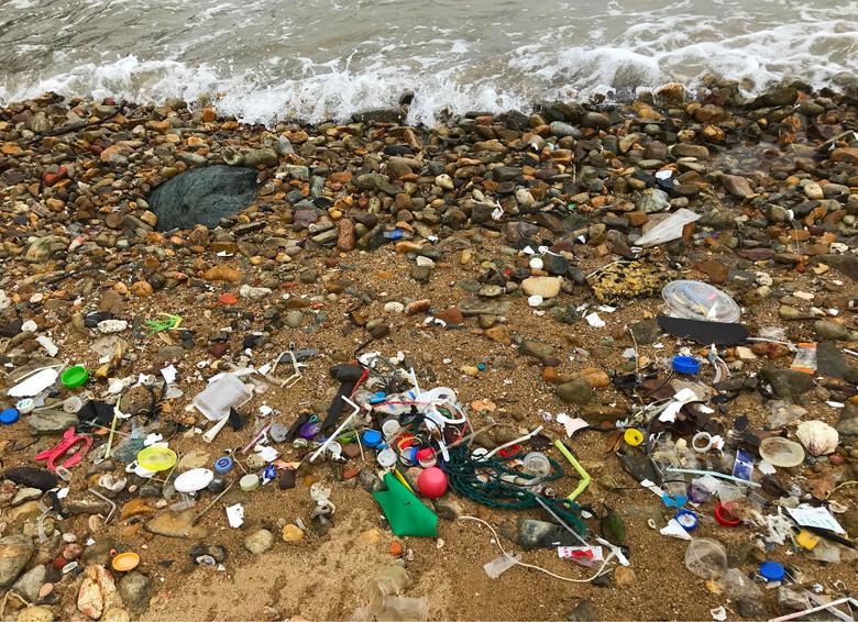shoreline dump.jpg