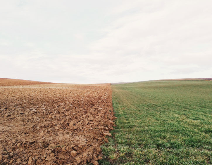 Field of dirt and grass, climate change from Animal Agriculture