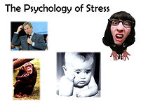 The psychology of stress.jpg