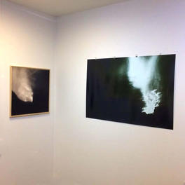 In situ: On Nature & the Environment III