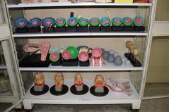 Museu_Da_Área_de_Histologia_e_Embriolog