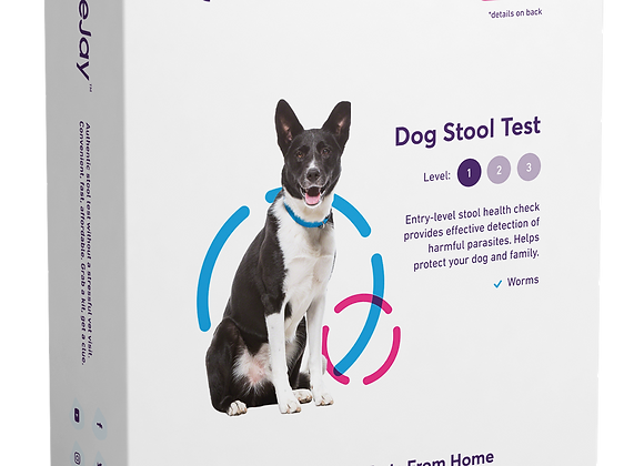 At-Home Dog Screening for Worms