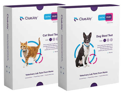 cluejay-level-1-dog-cat-boxes-paid.png