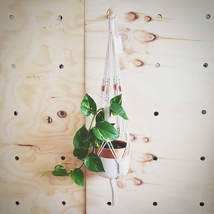 Plant Hanger with Copper