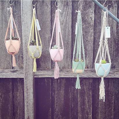 Macrababy Minis available @ Market Fair