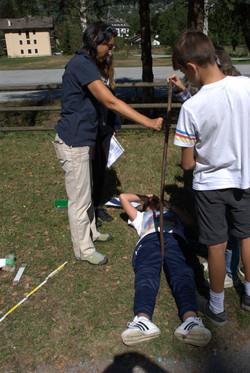 misurazione di un albero