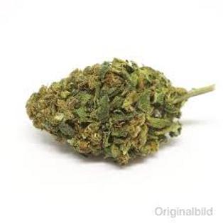 Bob`s  Limited CBD 9-13% / unter 1%THC