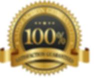 100-guarantee-seal-1.jpg