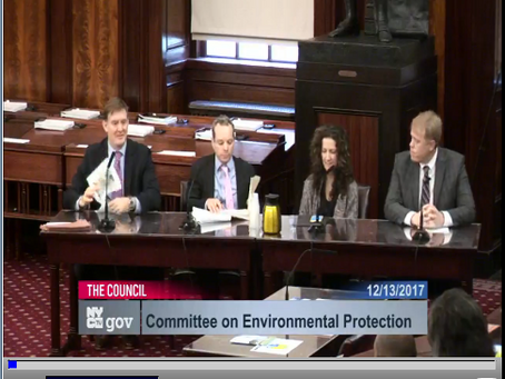 Advocates Fill Every Seat at NYC City Council Public Hearing on DEP's Sewer Overflow Plans