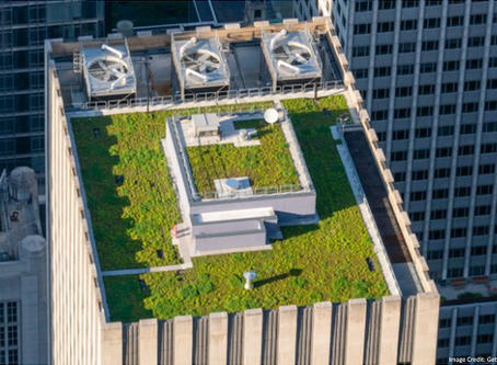 New York's Green Roof Tax Abatement Program: Next Steps