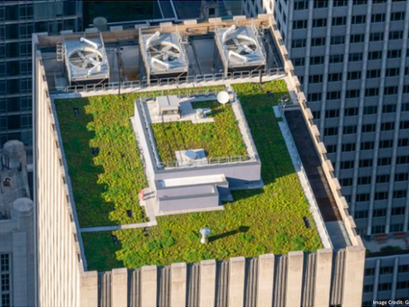 State Renews and Revises Green Roof Tax Abatement Program