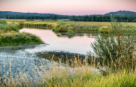 EPA and Army Corps Propose Roll Backs on Federal Protections in the Clean Water Act. Public Comments