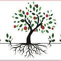 roots image .jpg