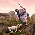 Jesus shepherd of our hearts .jpg