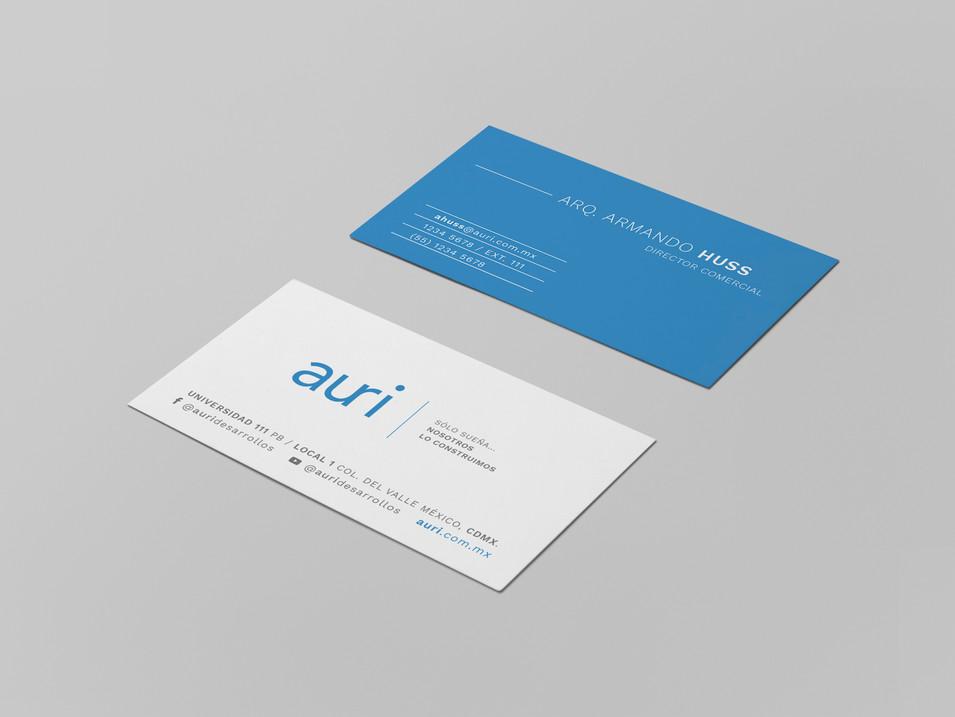 branding8-auri.jpg