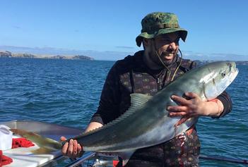 SeaspriteChartersKingfish.jpg