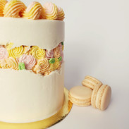 Faultline cake with buttercream