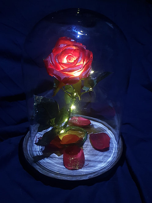 Beauty and the Beast Inspired Rose Globe