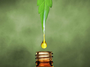 Major Misconceptions About CBD
