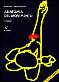 Anatomia Del Movimento