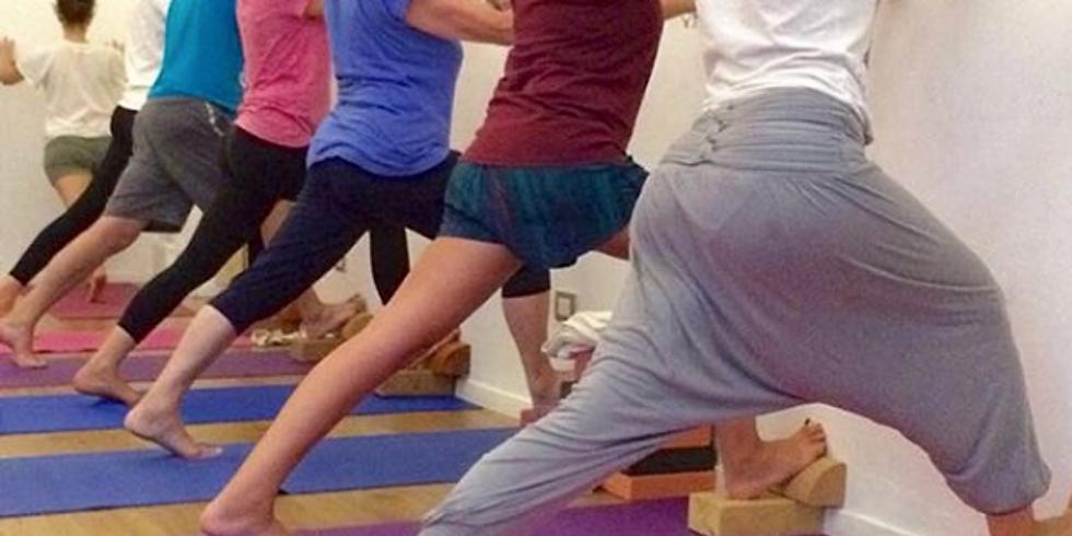 Lezioni Introduttive allo Yoga Iyengar 2017