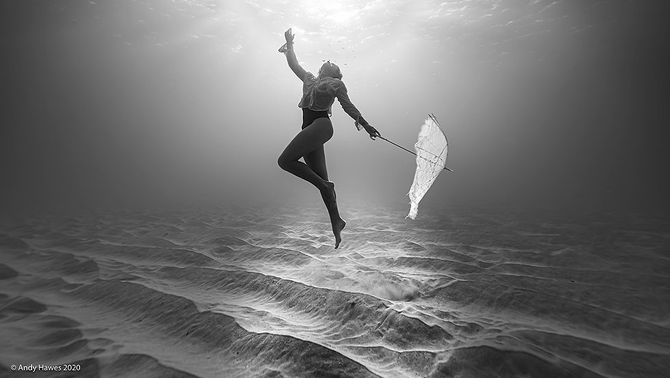 Singin' In The Sea