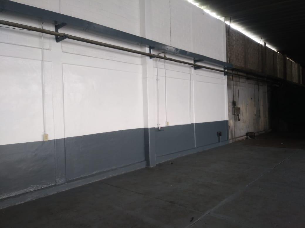Trabajos de pintura en muros