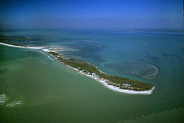 Fort Myers Dolphin Tours