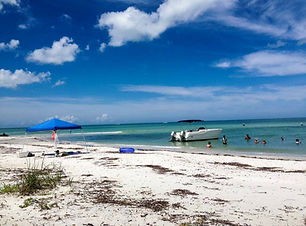 Fort Myers Beach eco tours