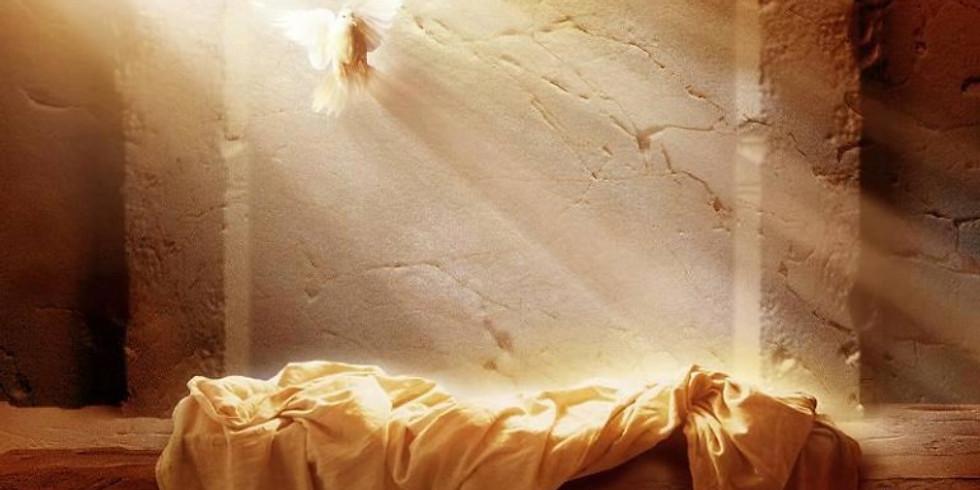 Domenica di Pasqua - Risurrezione del Signore - ore 11:30