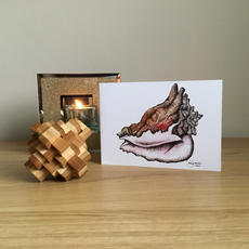 Conch Greetings Card