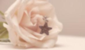 rose-3494596__340.jpg