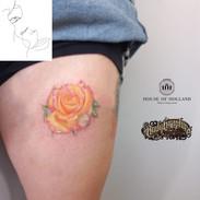 26Aug rose.jpg