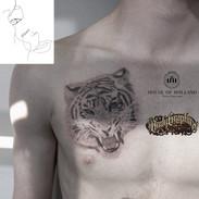 10Aug tiger.jpg