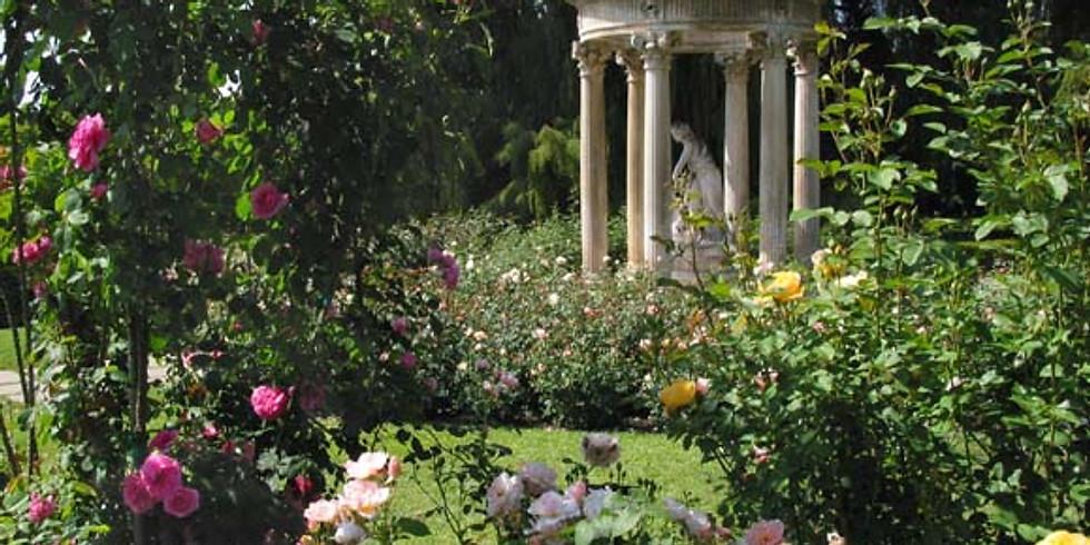 Rose Temple Garden