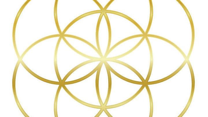 Infinite Oneness Reiki Attunement