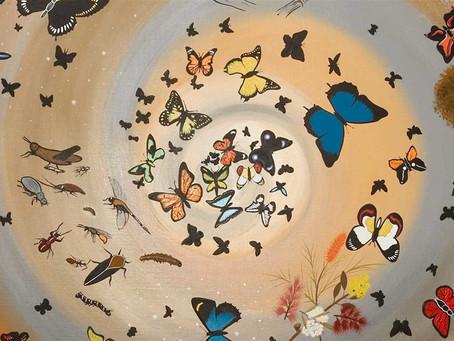 Birth of the Butterflies - an Aboriginal Dreamtime story by Michael J Connolly/Munda-gutta Kulliwari
