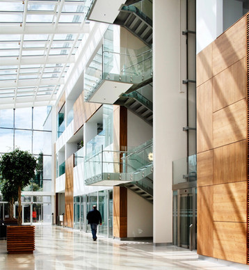 Genzyme Atrium, Waterford